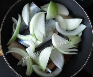 блюда из свежей сельди