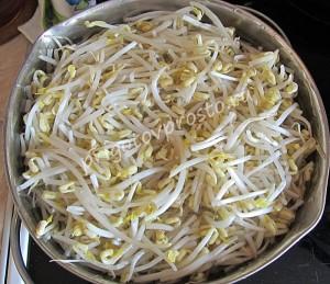 салат из ростков сои